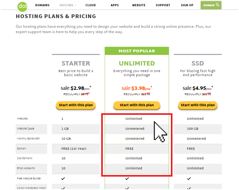 Did You Know You Can Host Multiple Websites on One Hosting Plan at No Extra Cost?